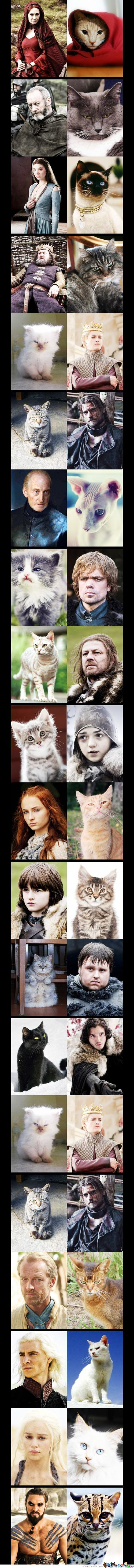 Game Of Thrones: Kitty Edition