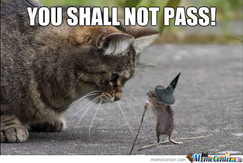 Gandalf Mouse