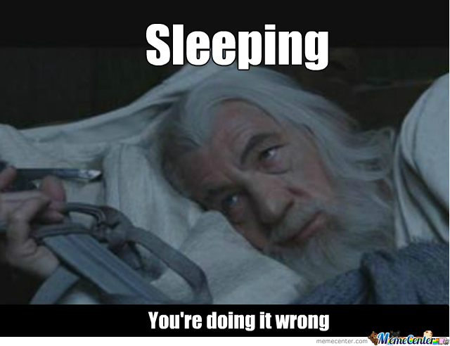Gandalf. Watching You Watch Him Sleep. Like A Boss