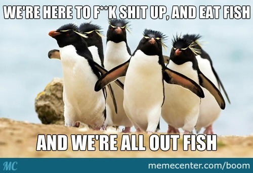 Gangsta Penguins