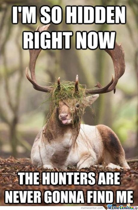 Genius Level: Oh Deer!
