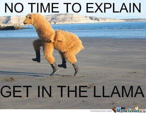 Get In The Lama