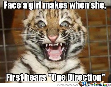 Girls + One Direction = Very Lonely Guys