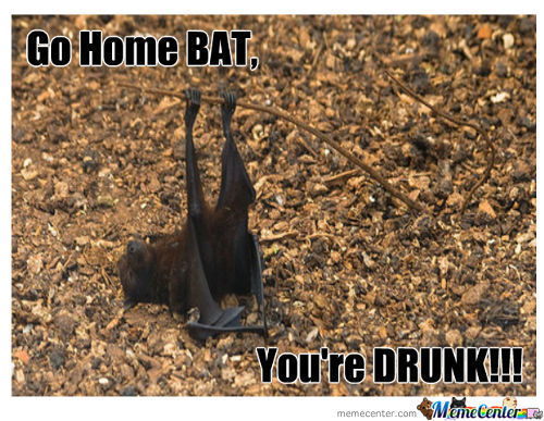 Go Home Bat.. .