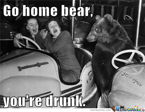 Go Home Bear...