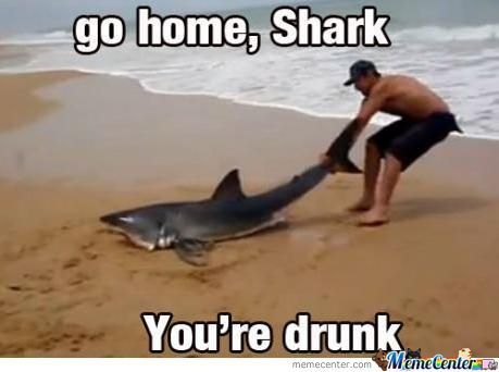 Go Home Shark