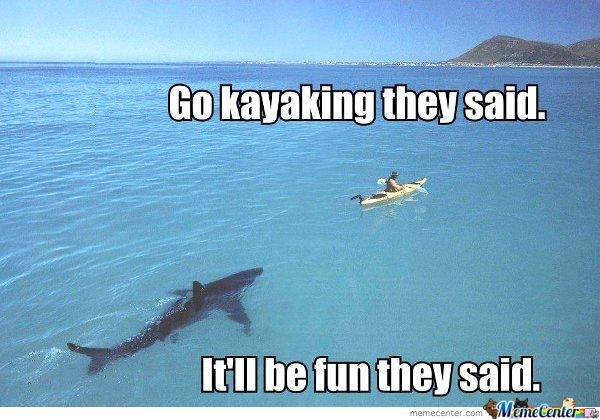 Go Kayaking They Said