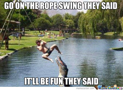 Go On The Rope Swing They Said!
