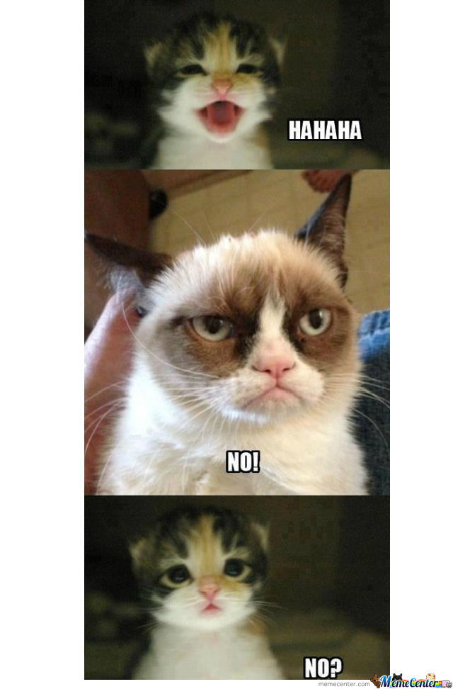 Go To Hell Grumpy Cat