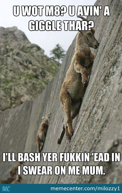 Goats Can Climb Rocks Better Than Me.