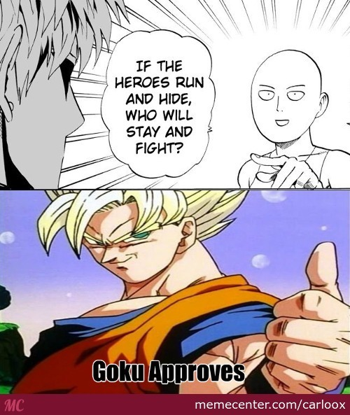 Goku Approves