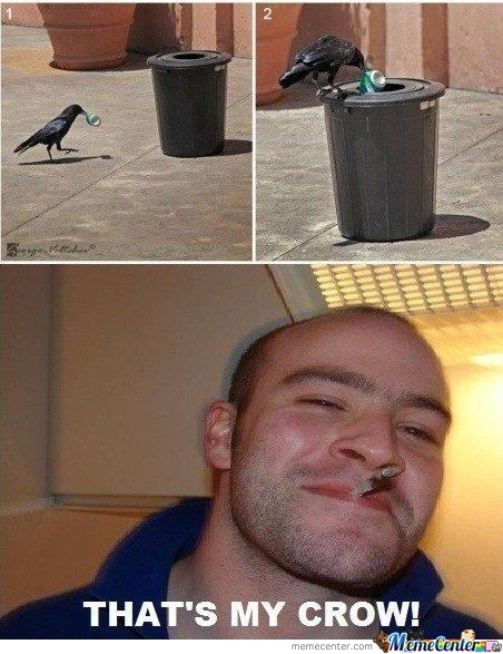 Good Guy Crow