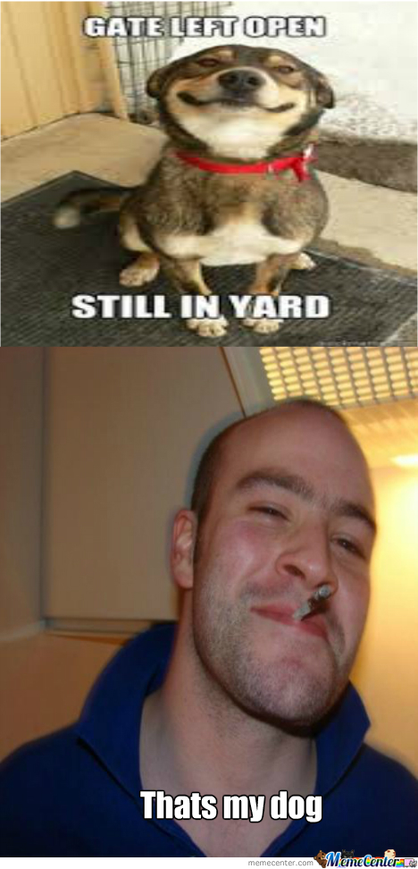 Good Guy Greg's Dog