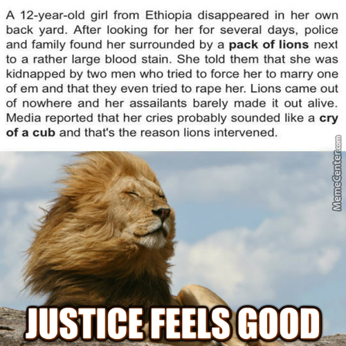Good Guy Lion Saves The Day....