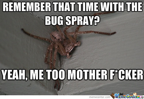 Remember that time with the bug spray