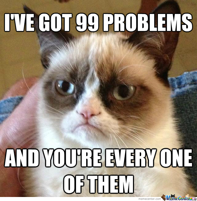 Got 99 Problems And They're All Bitches
