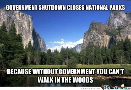 Government Logic