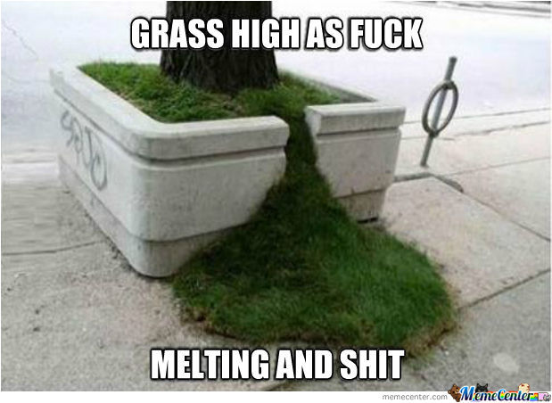 Grass High As Fuck