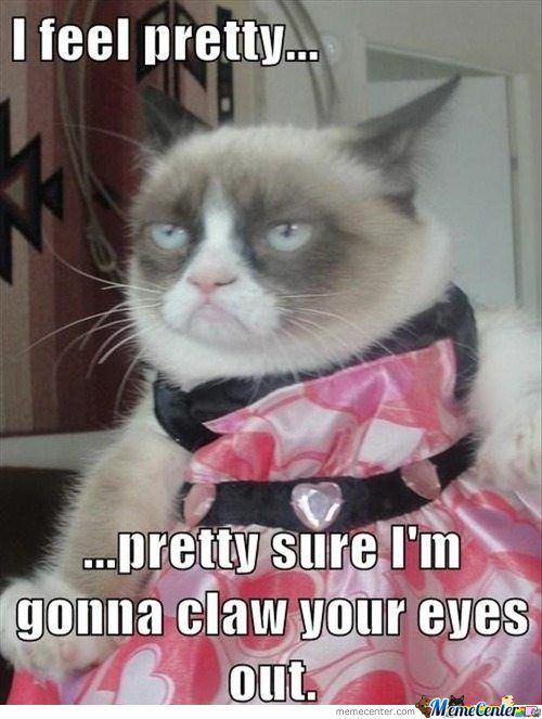 Grumpy Cat Abussed !!