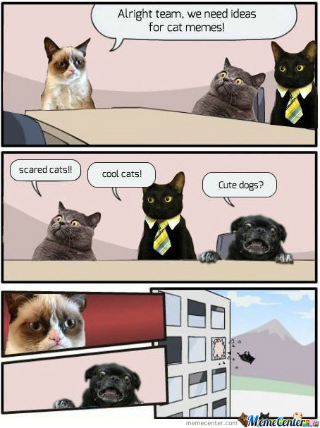 Grumpy Cat & Co.