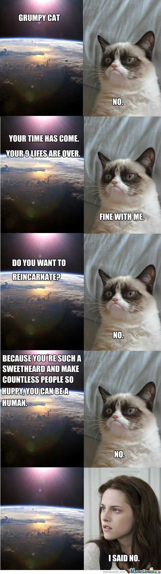 Grumpy Cat And The Universe
