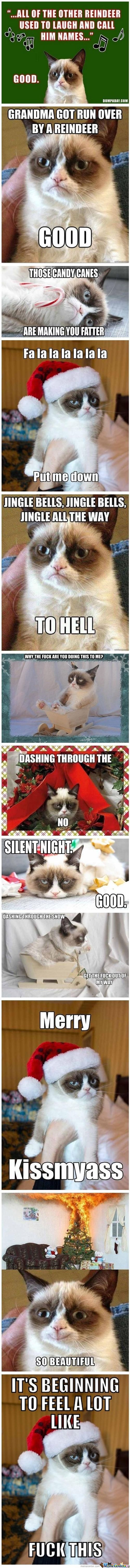 Grumpy Cat Christmas Compilation