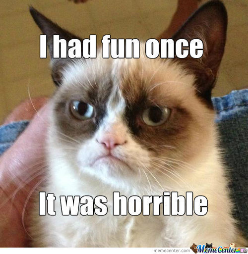 Grumpy Cat Doesn't Like Having Fun