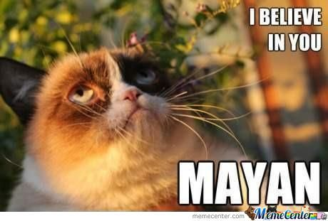 Grumpy Cat Has High Expectations