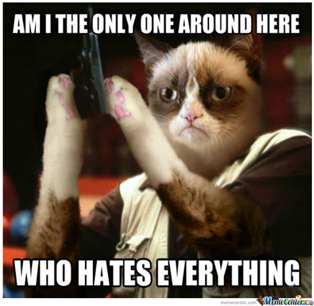 Grumpy Cat Hates Us All