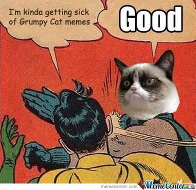 Grumpy Cat Is Everywhere