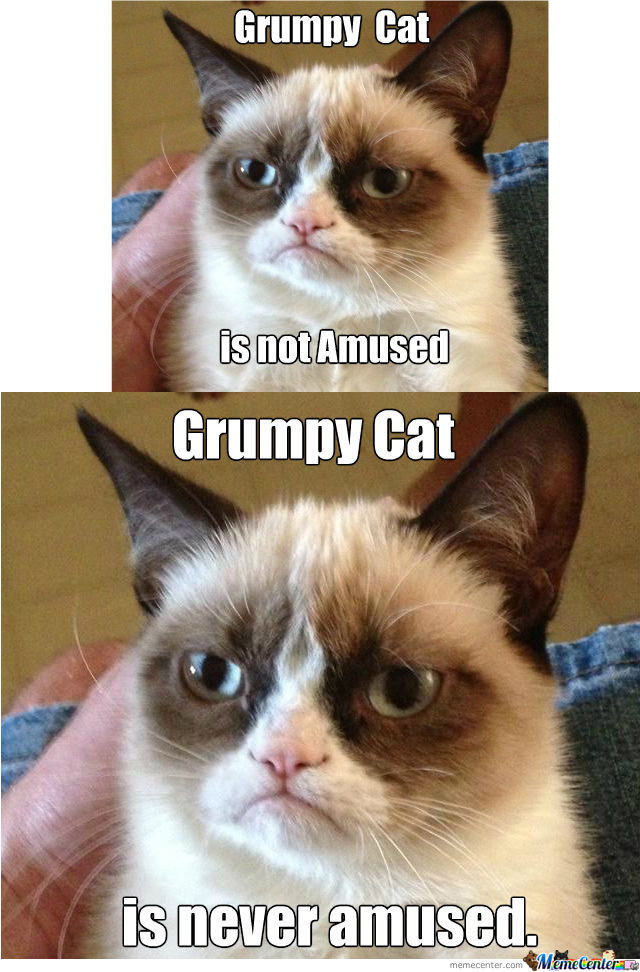 Grumpy Cat Is Not Amused by iamstylus - Meme Center