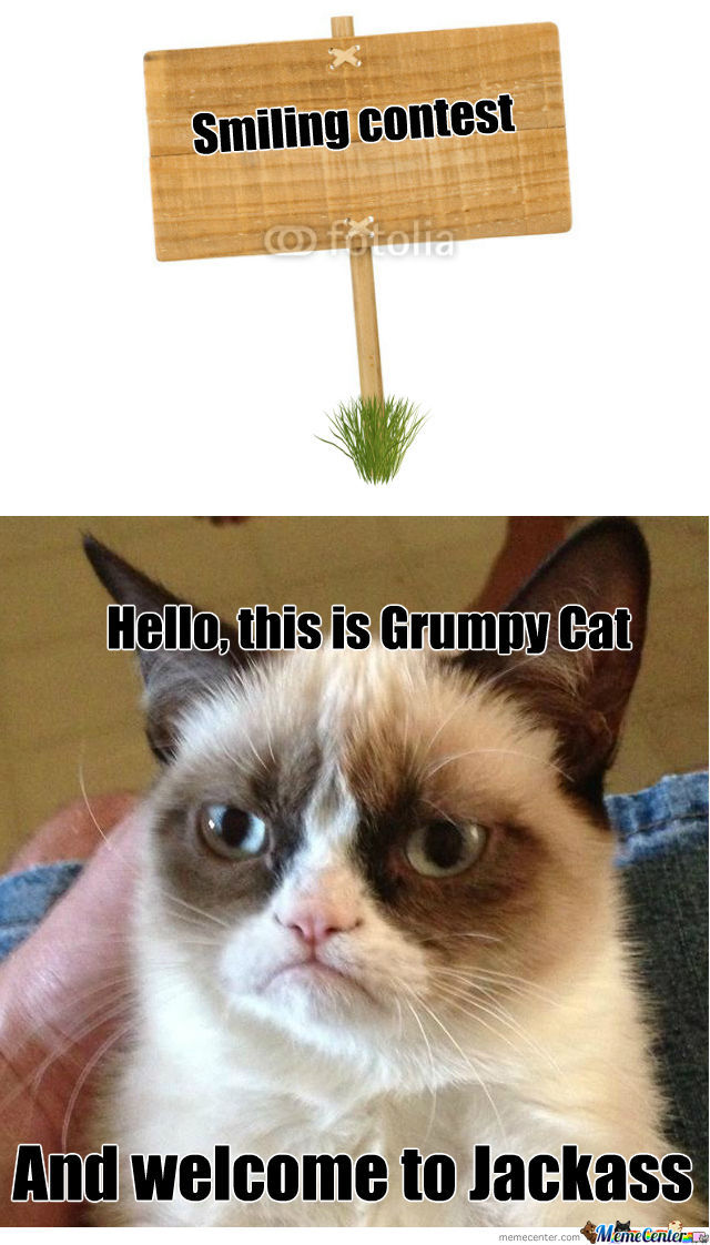 Grumpy Cat Jackass