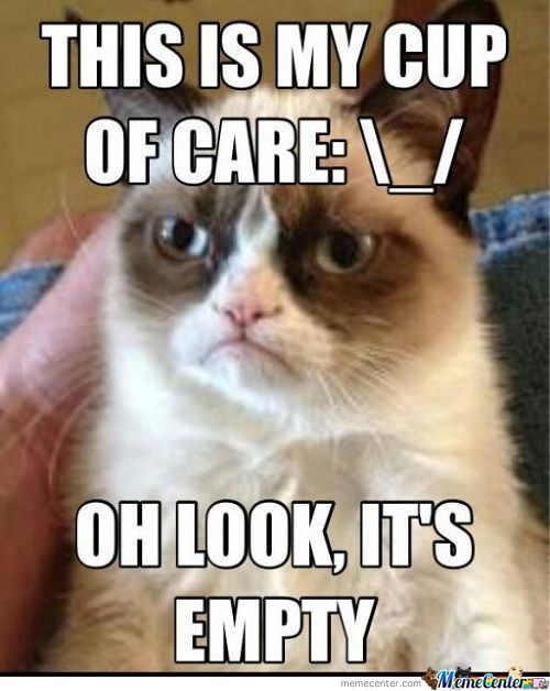 Grumpy Cat Just Doesn't Care