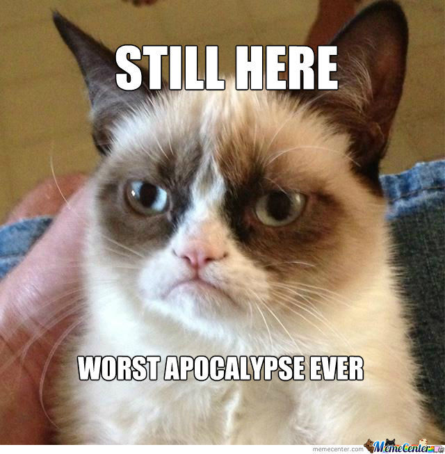 Grumpy Cat Knows Best