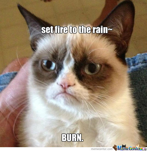 Grumpy Cat Music No.1