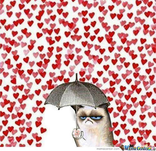 Grumpy Cat Needs No Love