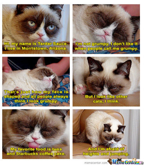 Grumpy Cat Not So Grumpy At All?