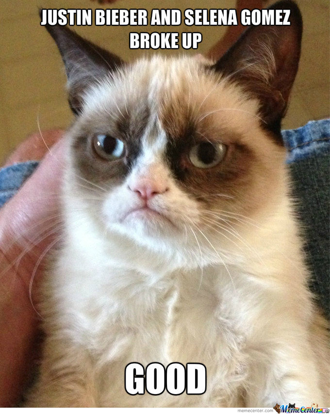Grumpy Cat On The Big Break-Up