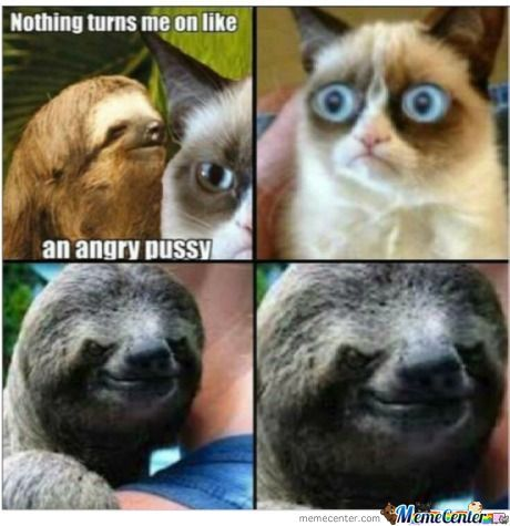 Grumpy Cat Vs Rape Sloth