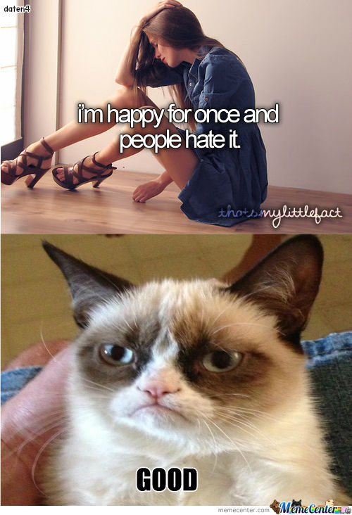 Grumpy Cat Vs Tumblr Girl