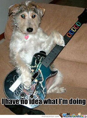 Guitar Hero Dog