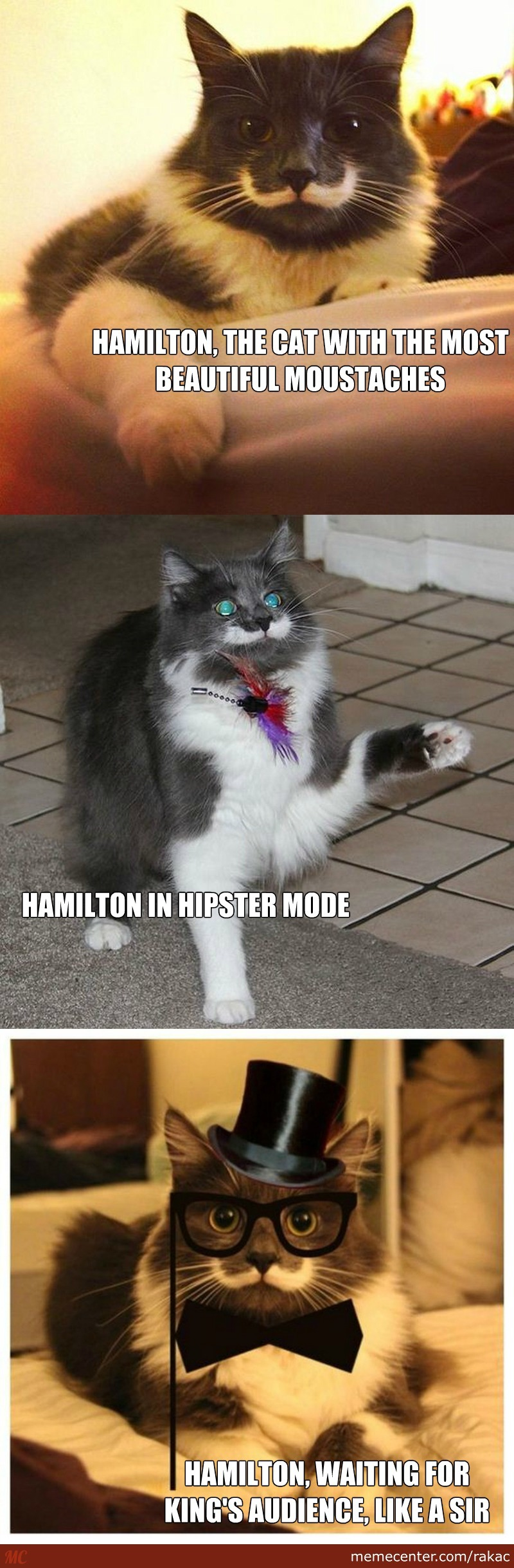 Hamilton The Fabulous