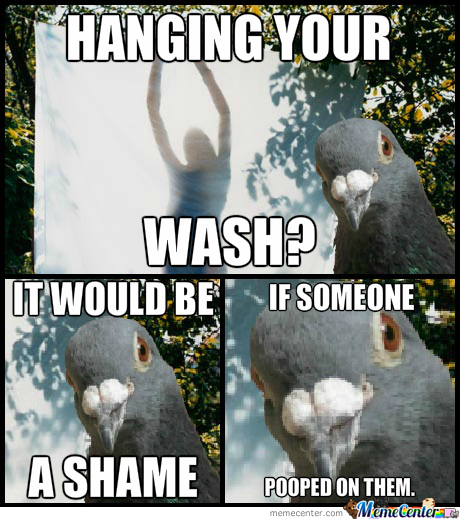 Hanging The Wash?