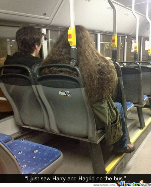 Harry And Hagrid On The Bus