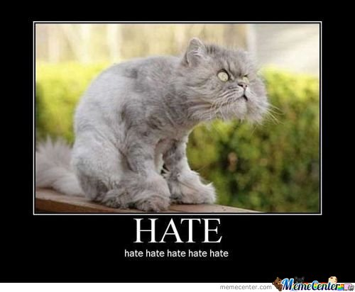 Hate Memes. Best Collection of Funny Hate Pictures