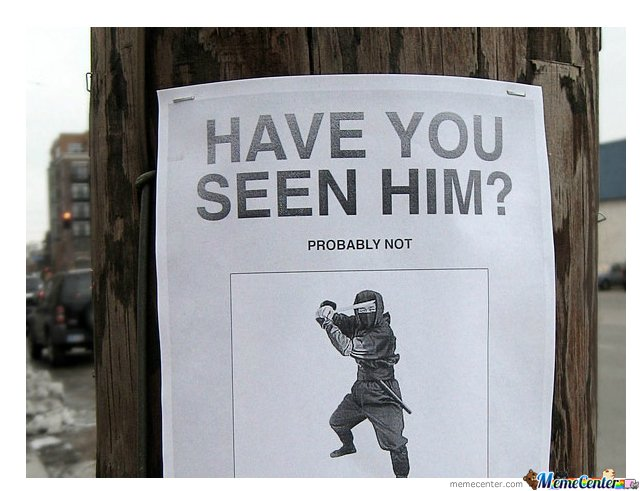 have u seen him...