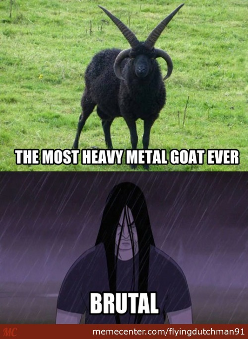 Heavy Metal Animals V1