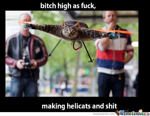 Helicat.explains Enough