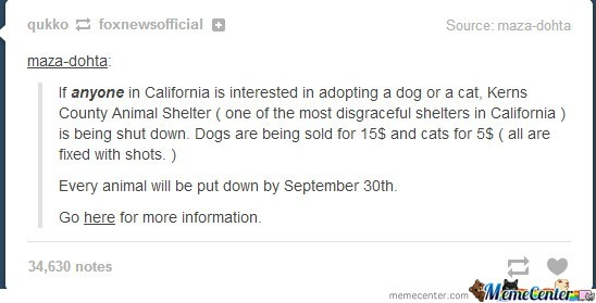 Help Those Poor Animals!