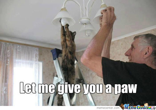 Let Me Give You A Paw Buddy